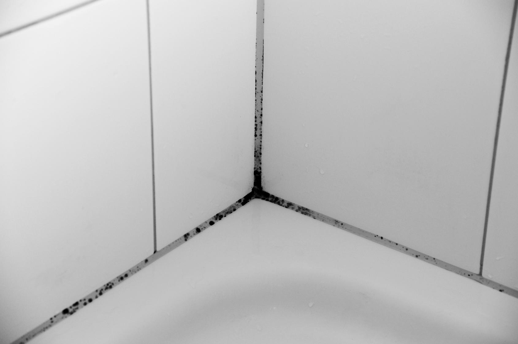 Badezimmer Schimmel Fugen